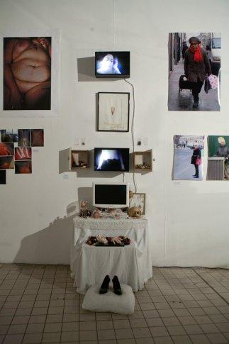 Installation : Fur Aphrodite
